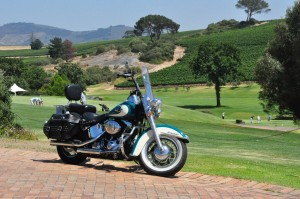 Harley at De Zalze (1)a